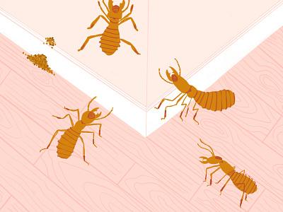Termites procreate ipad illustration pest wood buggy bug bugs termites