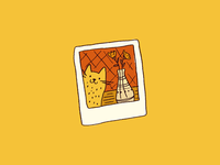 Cat Polaroid