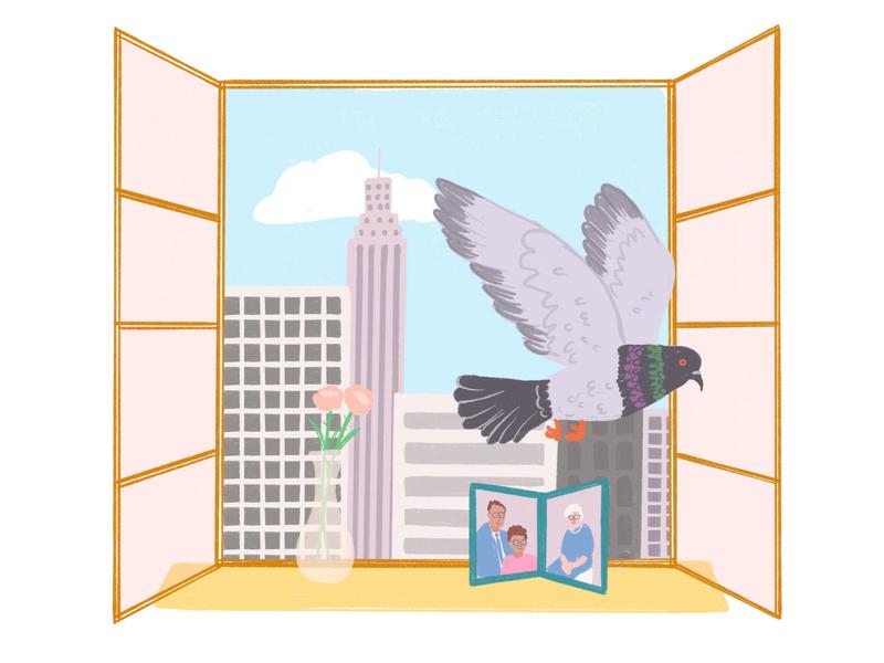 Eek! bird window apartment pigeon new york city nyc animals illustration
