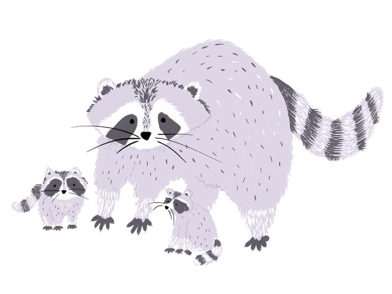 Raccoon Mama babies mom raccoon procreate design animals illustration