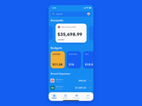 Budgeting App Concept