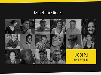 Meet the Lions :) Join the Pride!