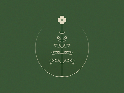 Apothecary plant logo mark natural apothecary flower