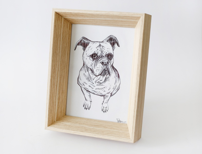 Doggy cute frame drawing illustration art dog