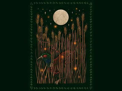 Growing wheat pheasant nature illustration art drawing wacom