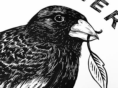 Lark Bunting nature ink art colorado lark bird drawing illustration