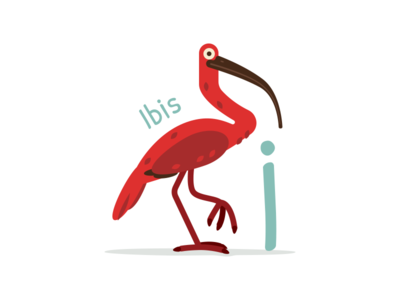 Animal Alphabet - Ibis