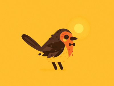 Elegant Robin Bird
