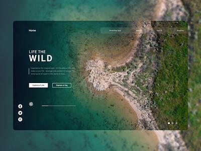 Travel web design - ux ui. design