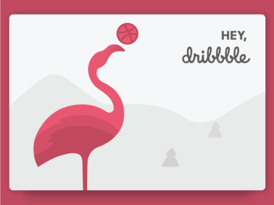 Hello, Dribbble! debut dribbble hello mountains flamingo