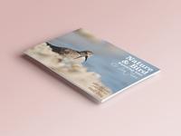 Flyer Nature & Birdwatching