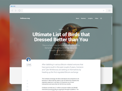 Module UI Kit Sample | Article ui kit sample header post typography blog article