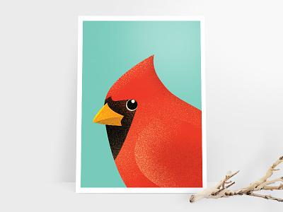 Cardinal Directions poster print texture illustration portrait bird cardinal
