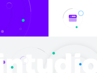 Intudio Brand Elements