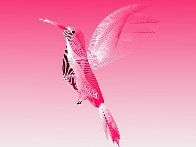 Beautiful Flying Birds beautiful icon bird illustration graphic design business logo design branding vector