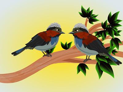 Beautiful Birds on tree vector illustration sky beautiful creative natural bird abd tree tree bird typography illustration graphic design business logo design branding vector