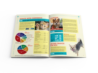 Oregon Humane Society 2013 Annual Report Spread 01 information design graphic  design print design editorial design