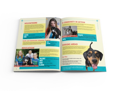 Oregon Humane Society 2013 Annual Report Spread 03 graphic  design print design editorial design