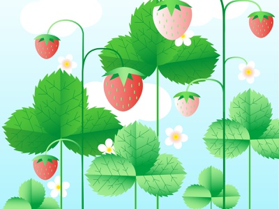 Summertime illustration with strawberries flat design cartoon botanical nature art nature plant pic cute atmosphere vibe berry strawberry summertime vector illustration wallpaper summer