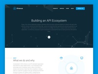 API Payment Ecosystem - Landing Page