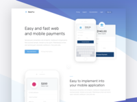 Payment Solution - Landing Page dailyui finance ui mobile card credit solution colors page landing payment