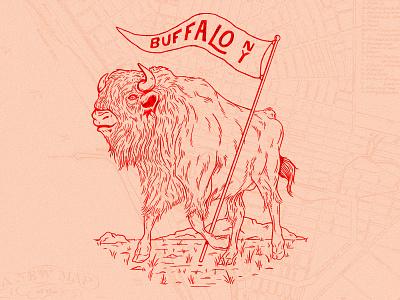 Buffalo animals illustration ny buffalo