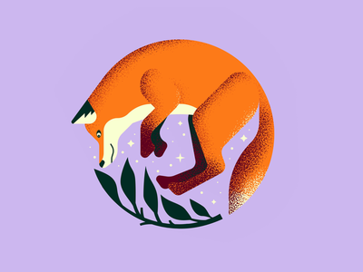 Fox fox illustration