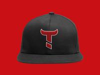 Toritos Baseball sport logo bull toros baseball