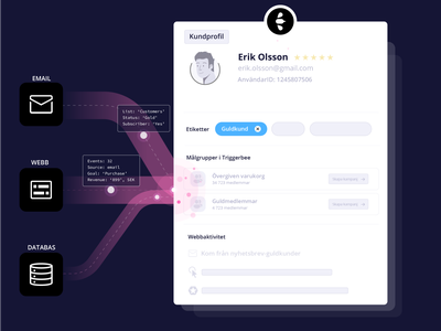Triggerbee Customer Profile saas digital marketing data driven marketing marketing customer profile customer data