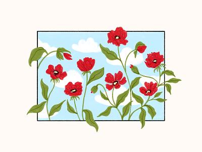 Poppies flowers poppies branding flourishing design illustration