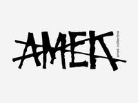 Amek X