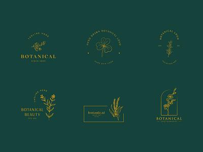 Botanical Floral element Hand Drawn Logo elegent emblem organic natural leaf minimal simple hand drawn botanical logo graphic design flower vector template symbol branding logo