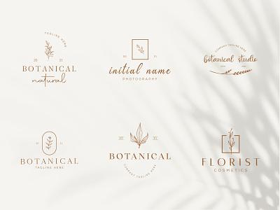 Botanical Floral element Hand Drawn Logo with Wild Flower elegent sign icon beauty design organic floral nature plant emblem minimal simple symbol flower vector template branding logo hand drawn botanical logo
