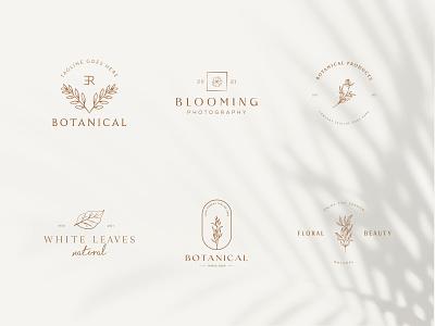 Botanical Floral element Hand Drawn Logo with Wild Flower beauty decoration organic plant sign spa nature leaf elegent emblem symbol flower vector template branding logo floral hand drawn botanical logo