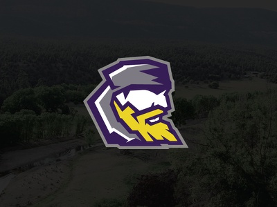 Mountaineers :: School Rebrand logo design white gray purple yellow modern logo rebranding rebrand mountains mountaineer mascot