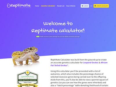 Reptimate Genetics Calculator v2 bootstrap 4 yellow purple calculator sketch app angle angled ux genetics photography design reptile website ui sketch