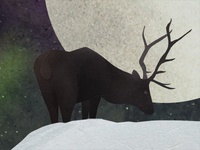 Moonlight Stag
