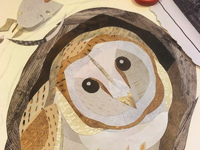Barn Owl Collage illustration wildlife birds collage barn owl