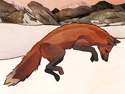 Leaping Fox wildlife collage fox