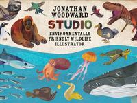 Jonathan Woodward Studio Promo