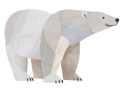 Jonathan woodward studio polar bear