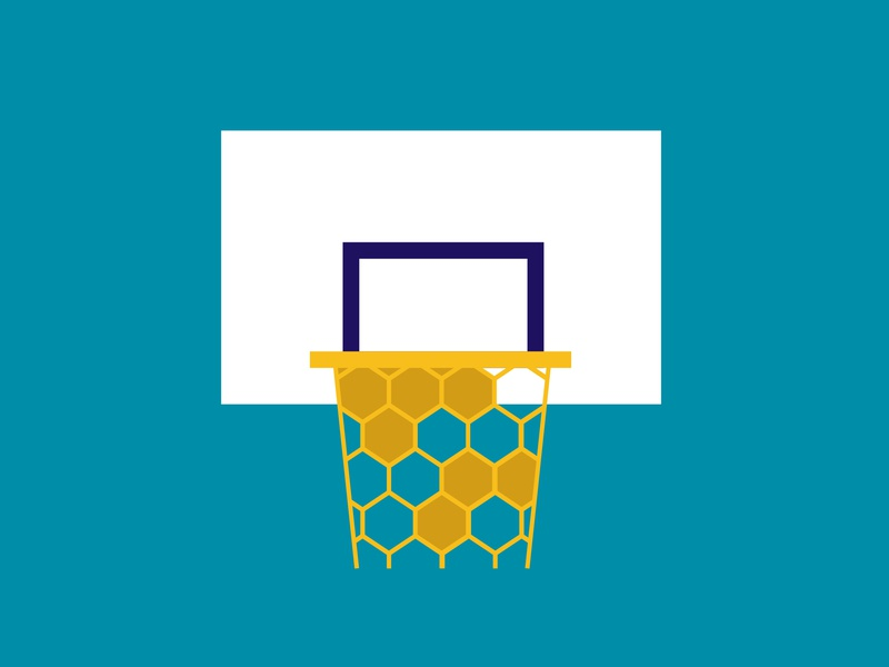 Charlotte Hornets vs Brooklyn Nets honey beehive bees basketball illustration minimalist nba hornets charlotte nets brooklyn