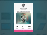 Dribbble Profile Card