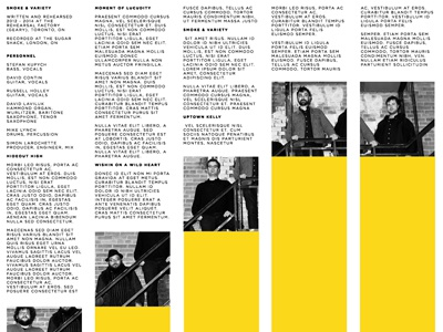 Liner Notes stripes music band notes liner