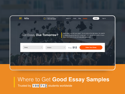 Essay writing service service education student site interace website flat icon logo web vector ux ui typography minimal illustration design
