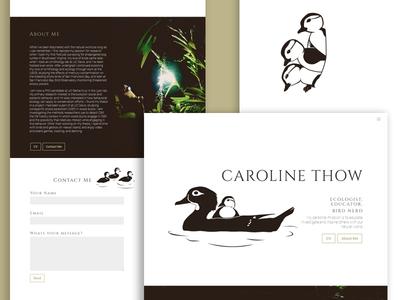 Duck Biologist Portfolio Showcase aix sponsa minimal bird branding illustration website duckling ducks about research cv portfolio