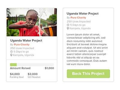 Pure Charity project widget ui design