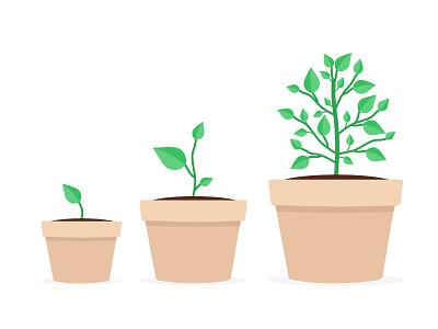 Flat Plants plants design illustration