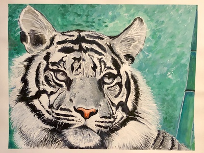 Try wildlife nature tiger watercolor painting gouache illustration