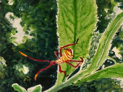 The Whole World is a Garden - 1 painting nature spring insect bug wildlife watercolor illustration gouache